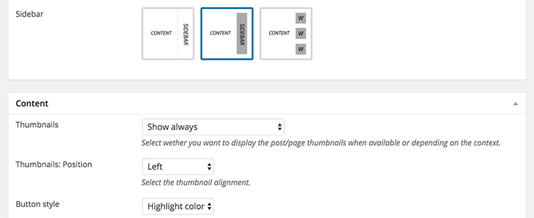 NicheWP WordPRess Theme - Preview Settings